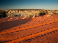 Top 5 reasons to visit the Kalahari Desert