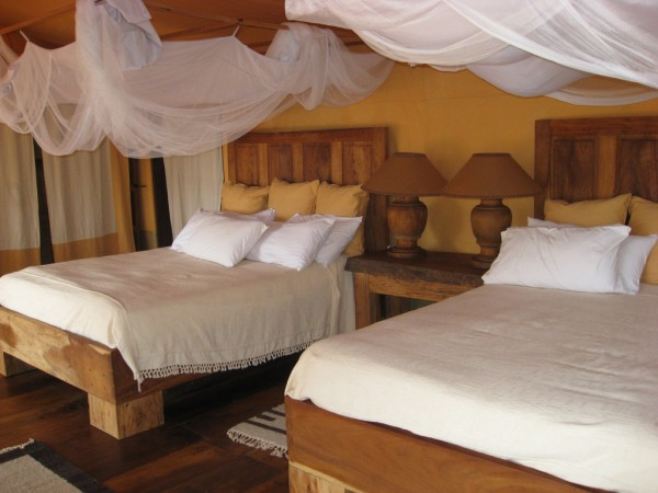 safari accomodation